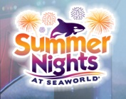 Summer Nights Capa