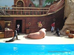 Clyde & Seamore atuando no antigo Take Pirate Island