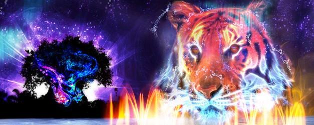 animal-kingdom-night-14-full.jpg