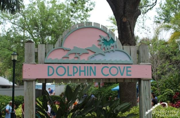 SeaCast-March-2016-SeaWorld-Orlando-Dolphin-Cove-004
