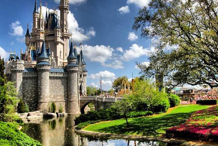 Cai O N 250 Mero De Visitantes No Walt Disney World Receitas