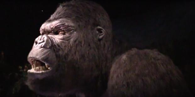 King-Kong-animatronic-630x317.png