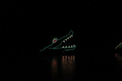 crocodile-at-Disney.jpg