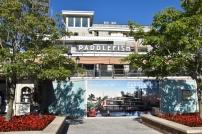 3_paddlefish